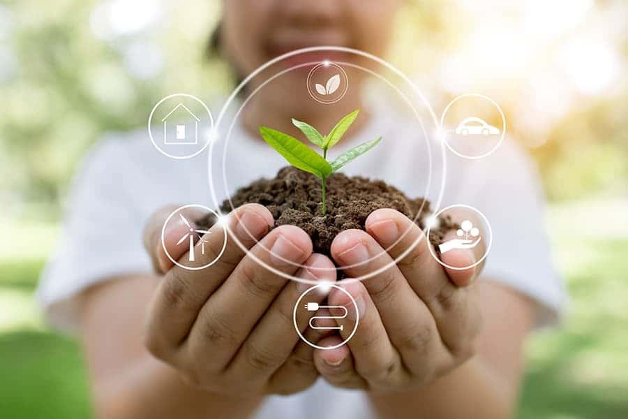O que é contabilidade ambiental